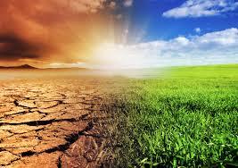 Una o nessuno: la nostra firma per l'ambiente